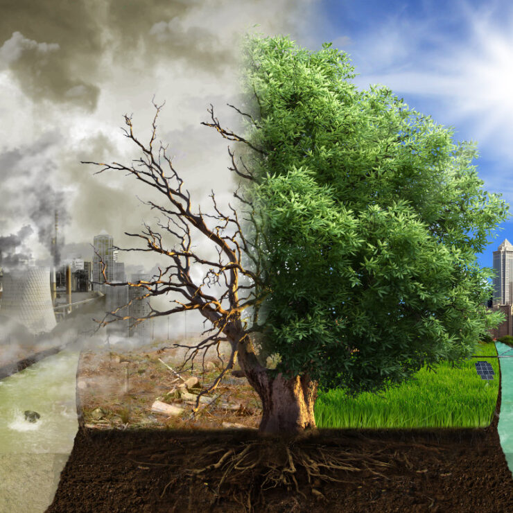 the necessity of keeping cities green and sustainable sq