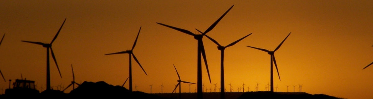 Wind power plants performance beats other renewable resources rec