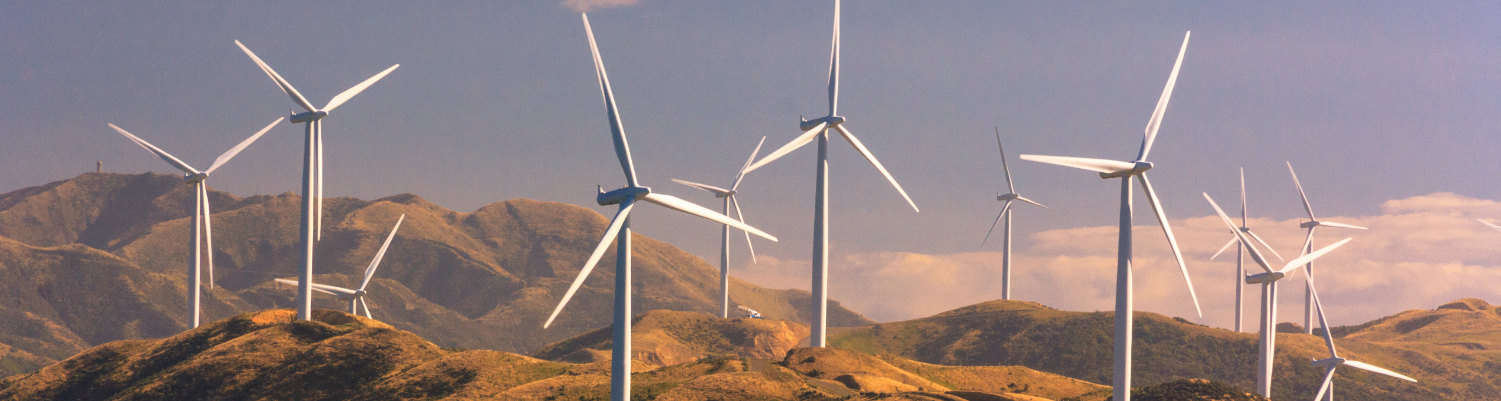 wind power plants performance beats other renewable resources thin