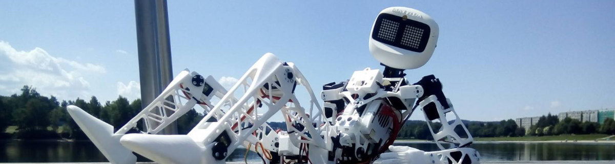 a robotic hich-hiker gets around the country land