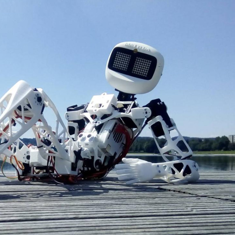 a robotic hich-hiker gets around the country sq