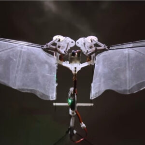 the defly an insect robot with real wings sq